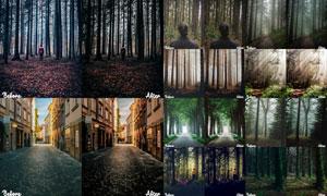 12款户外照片暖色艺术效果LR预设