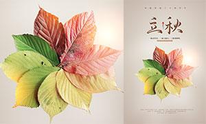 創意的樹葉主題立秋節氣海報PSD素材