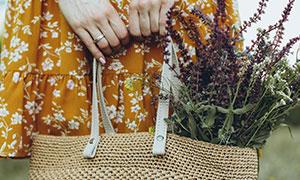 手提袋里的花草特写摄影高清图片