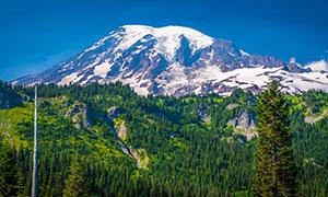 蓝天雪山植被自然风光摄影高清图片