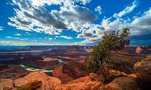 蓝天白云峡谷树木风光摄影高清图片
