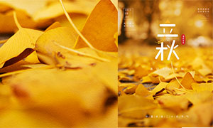 金色主題立秋時節海報設計PSD素材