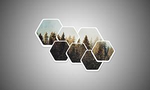 圆角样式六边形边框照片模板源文件