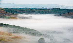 早晨雾欢呼声不绝于耳气围绕的田园美景摄影图片