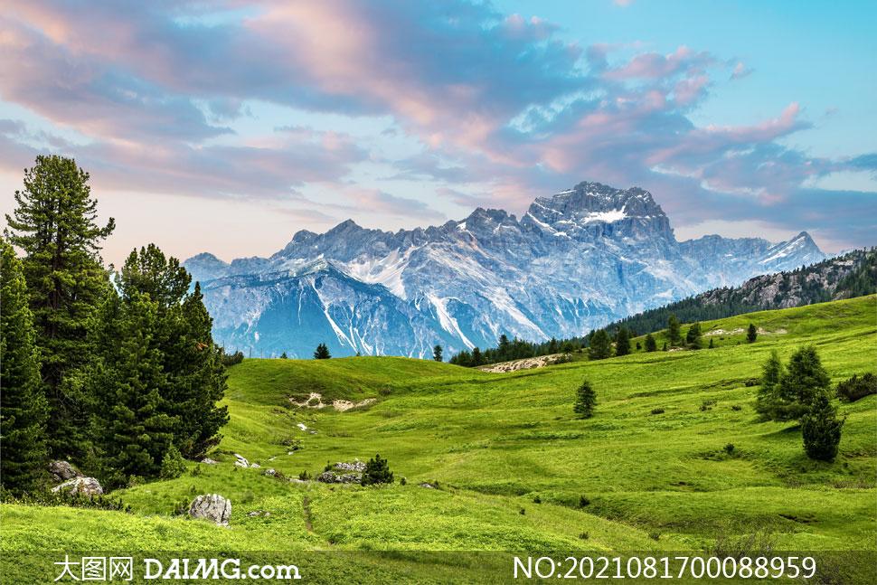大山中山坡上的绿色草地摄影对这本书图片