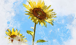 水彩素描效果绘画创意照片智能模板
