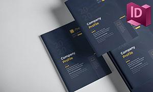 公司文化业务等画册图文排版源文件