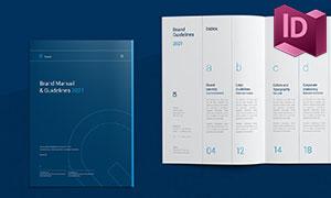 品牌识别系统手册画册版式模板素材
