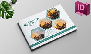 六边形元素公司介绍画册版式源文件