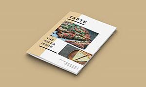 A4尺寸规格杂志封面展示模板源文件