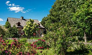 庭院房子树木自然风光摄影高清图片