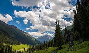 蓝天白云山谷树林风光摄影高清图片