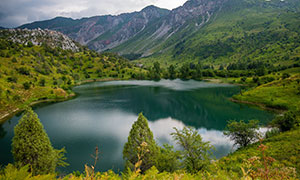 山坡植被与湖畔树木等摄影高清图片