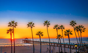 蓝天晚霞大海椰树风光摄影高清图片