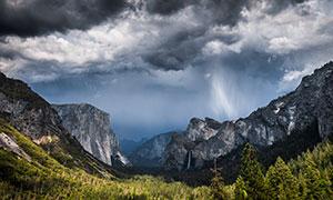 树木与雾气笼罩的远山摄影高清图片