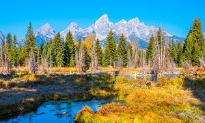 大提顿国家公园的秋天美景摄影图片