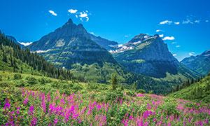 美国冰川国家公园自然风光高清图片