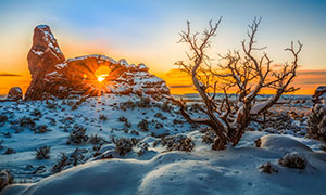 寒冷冬天岩石树木风景摄影高清图片