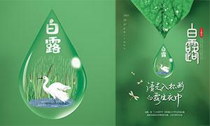 水滴主題白露節氣海報設計PSD素材