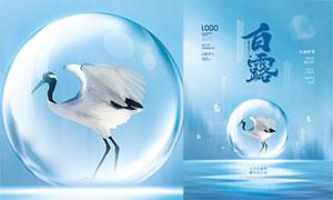 藍色小清新白露節氣海報設計PSD素材