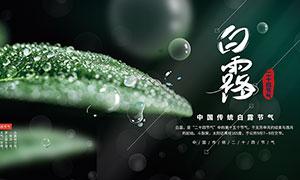 綠色主題白露節氣宣傳展板設計PSD素材