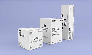 三种规格的包装盒样机模板设计素材