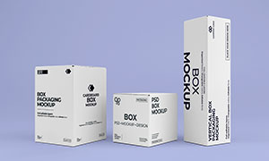 三款硬纸板包装盒效果展示样机模板