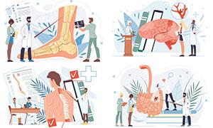 骨骼與臟器等醫學主題創意矢量素材