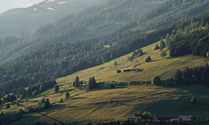 雾气缭绕山坡树木风光摄影高清图片