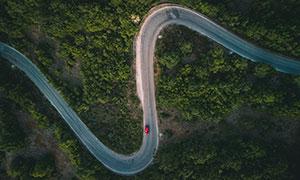 树林中的道路航拍风光摄影高清图片