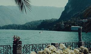鲜花护栏湖光山色风景摄影高清图片