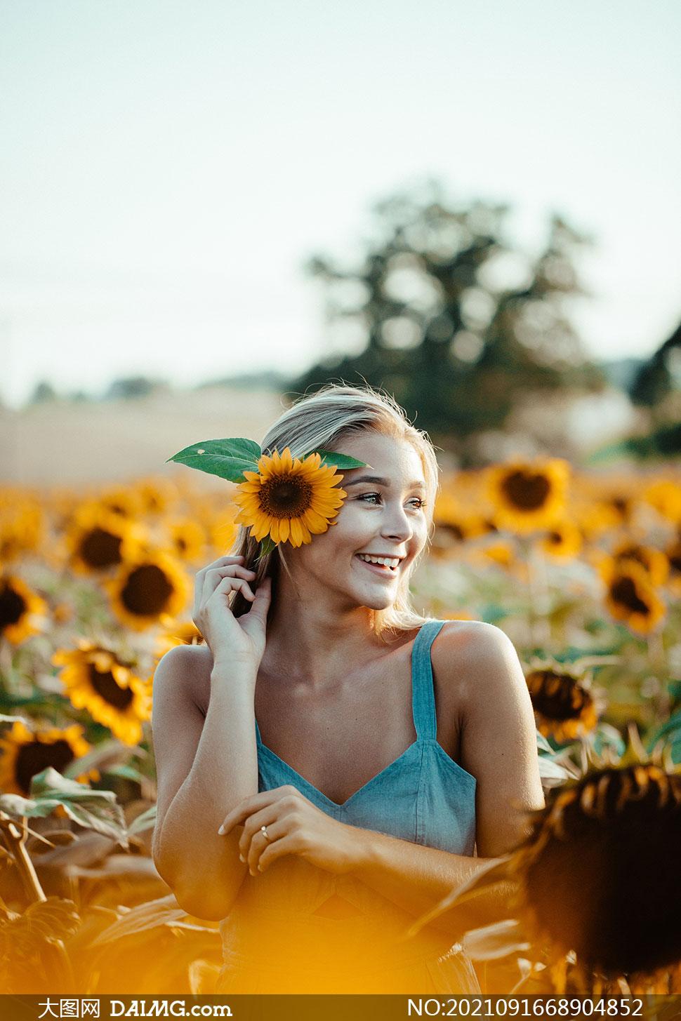在葵花园里的开心美女摄影高清图片