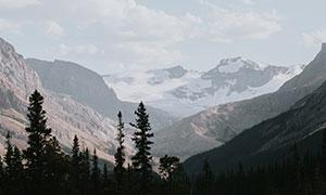 天空白云雪山树木风光摄影高清图片