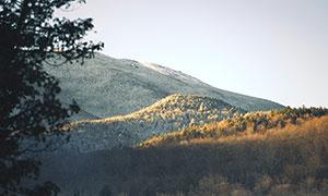 高山脚下湖畔树木风光摄影高清图片