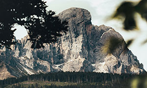 树木掩映中的大山树林摄影高清图片