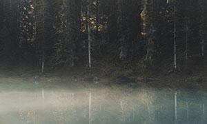 山脚下的湖泊树林风景摄影高清图片