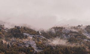 彌漫著霧氣的山間樹林攝影高清圖片
