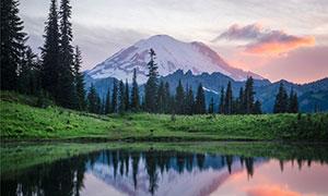 雪山與湖畔的樹木草地攝影高清圖片