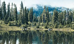 湖光山色與湖邊的樹木攝影高清圖片