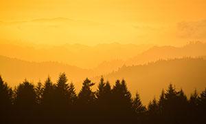 樹林剪影與遠處的群山攝影高清圖片
