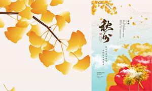 飘落的银杏叶秋分节气海报PSD素材