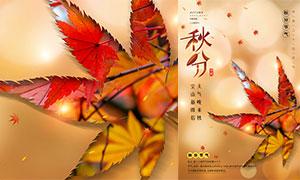 创意枫叶主题秋分节气海报PSD素材