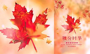 红枫主题秋分时节海报设计PSD素材