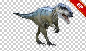 恐龙及其头骨骨骼免抠图片高清素材