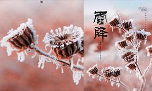 植物霜凍主題霜降節氣海報設計PSD素材